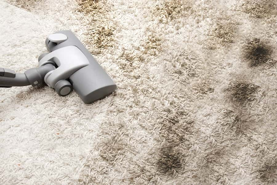 Carpet with Cleaning, Newscrable
